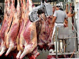 normas exportacion a china senasa