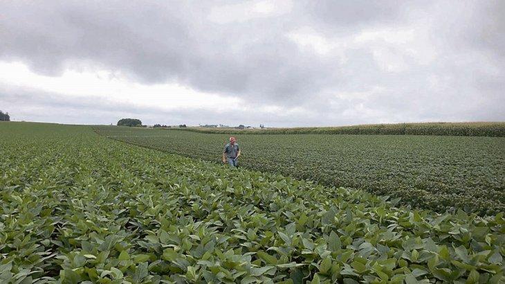 Retenciones: el Gobierno suspendió el registro de exportaciones agrícolas