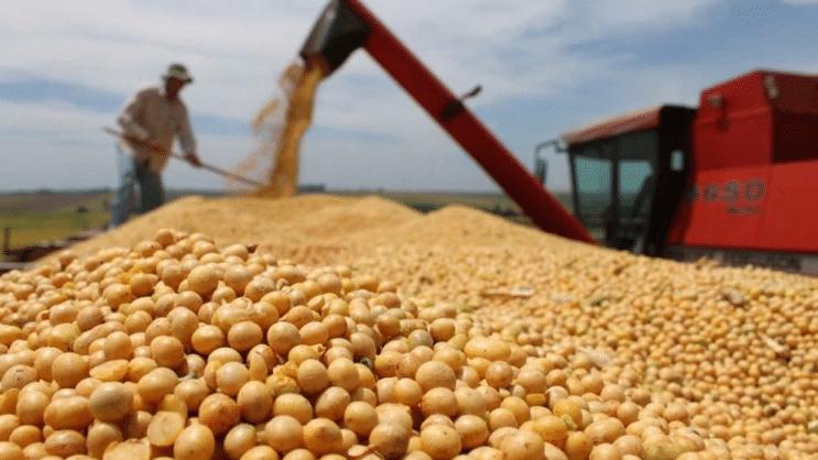 El Gobierno anunció la suba de retenciones a la soja con compensaciones para pequeños productores y reducciones para las economías regionales