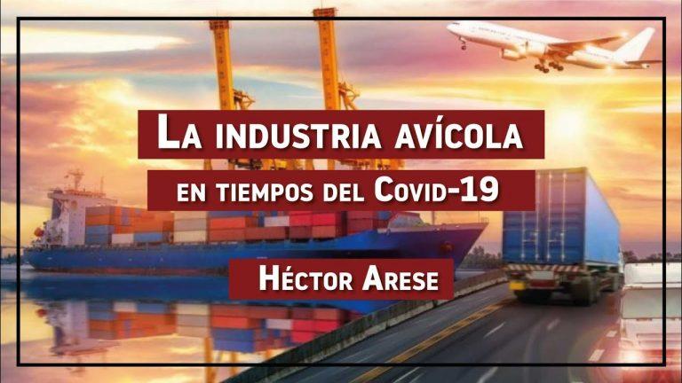 La industria avícola en tiempos del Covid-19 EP 6: Héctor Arese – Licenciado en Comercio Exterior