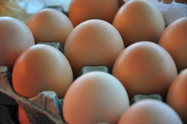 El sector avícola solitcitó medidas frente a las importaciones