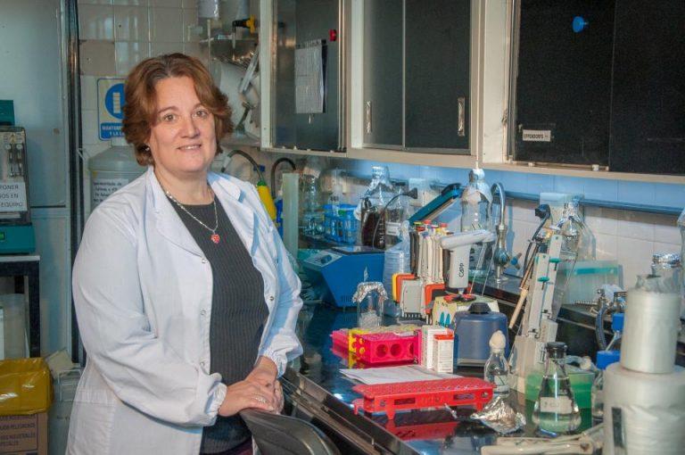 Se inoculó el primer lote de aves con la proteína RBD de SARS-CoV-2