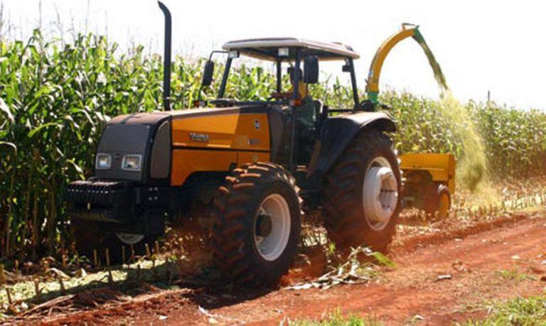 Brasil: ¿el segundo mayor exportador mundial de maíz?