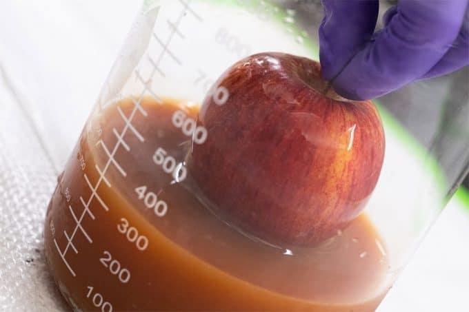 Recubrimientos en base a huevos para ampliar la vida de frutas y verduras