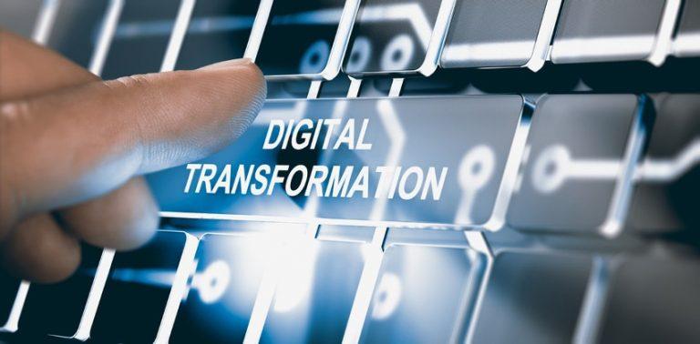 Búsqueda de nuevos horizontes para la industria avícola: digitalización de las operaciones aduaneras. ¿Es posible?