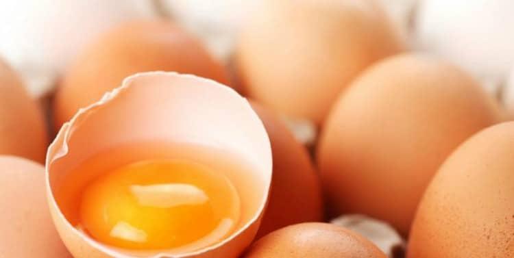 Semana del huevo: La colina y su importancia durante el embarazo y la lactancia