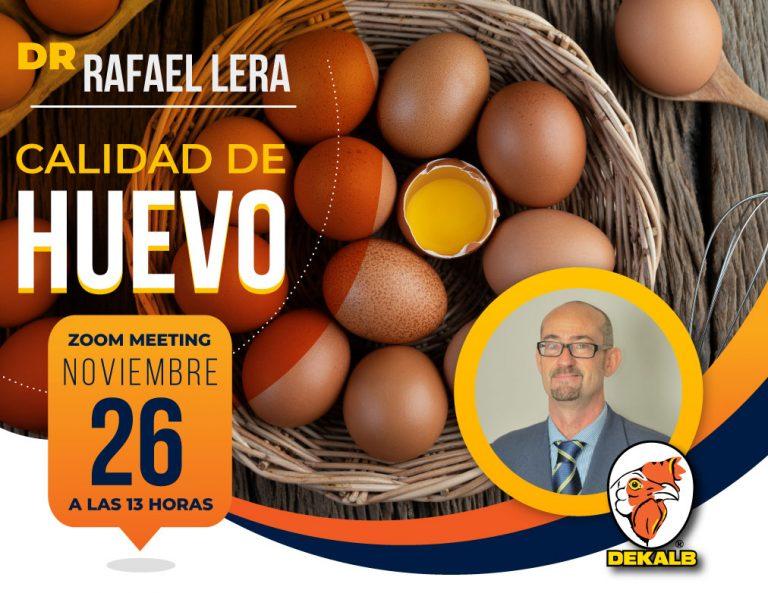 Calidad de Huevo: Webinar organizado por Cabaña Modelo el próximo Jueves 26 de Noviembre