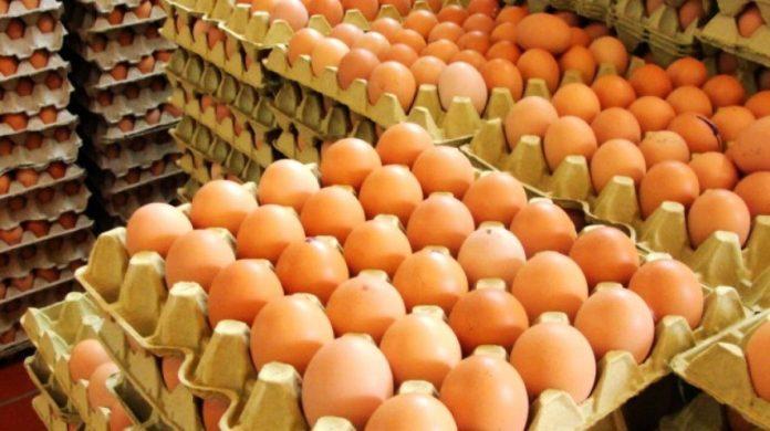 El huevo de reproductoras pesadas distorsiona el precio de mercado