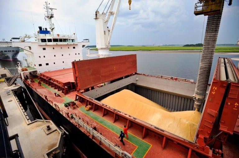 Argentina embarcó 56,5 millones de toneladas en el 2020