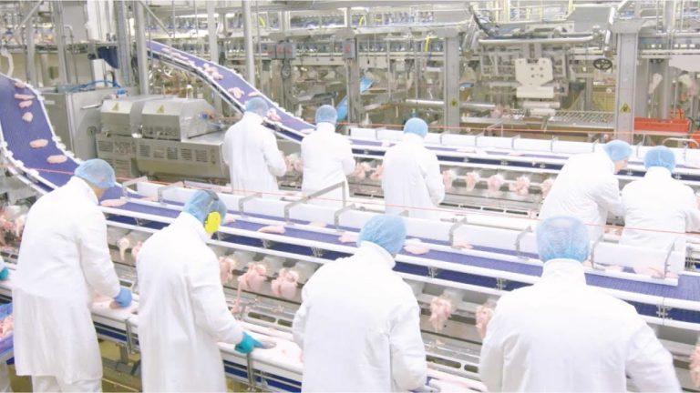 MAREL: La tecnología de inspección garantiza alimentos seguros
